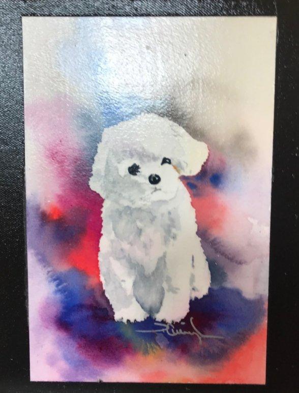 Acrylic Painting White Dog Colorful Background
