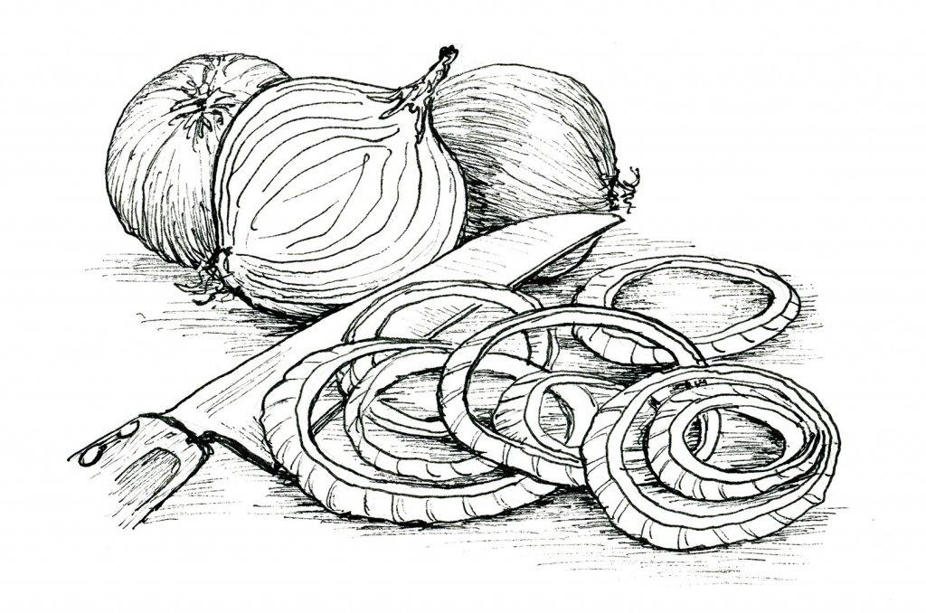 Day 1 Inktober 2019 Onion Rings Ink Drawing__.jpg