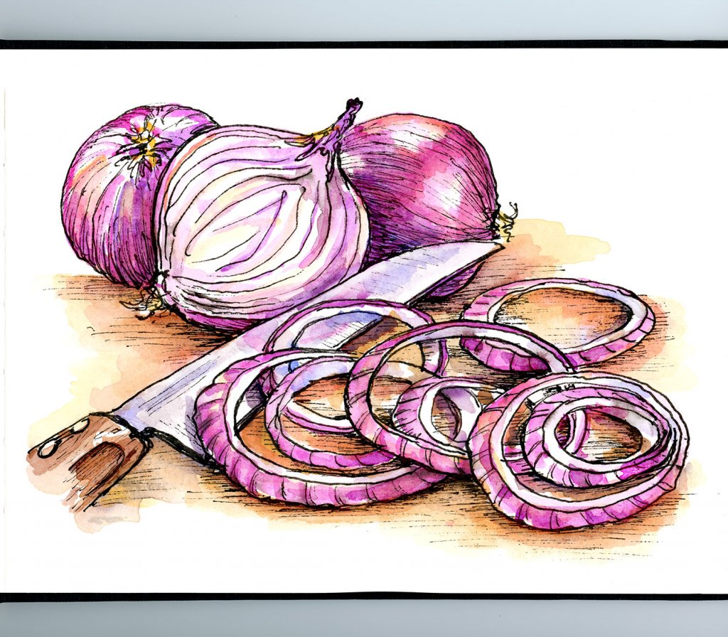 Red Onions Knife Inktober Watercolor Illustration Sketchbook Detail