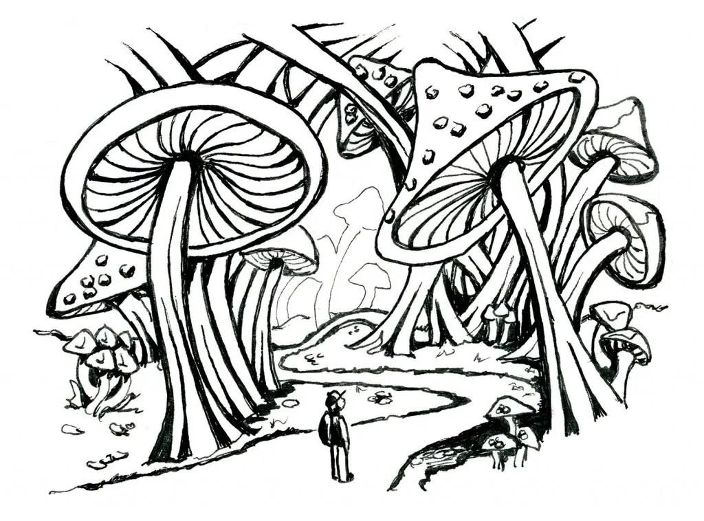 Mushroom Forest Storybook Inktober 2019 Illustration