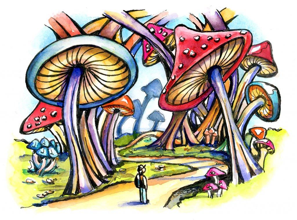 Mushroom Forest Storybook Watercolor Illustration