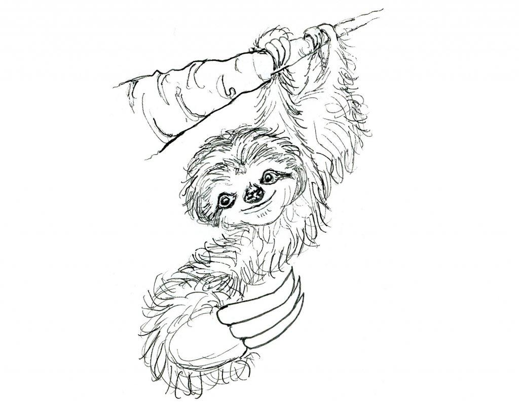 Day 18 - Sloth On Tree Branch Inktober 2019 Illustration