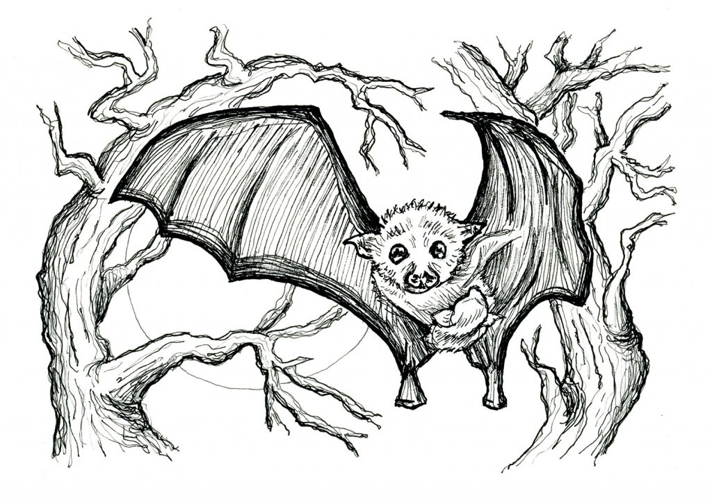 Baby Bat And Mother Inktober 2019 Illustration