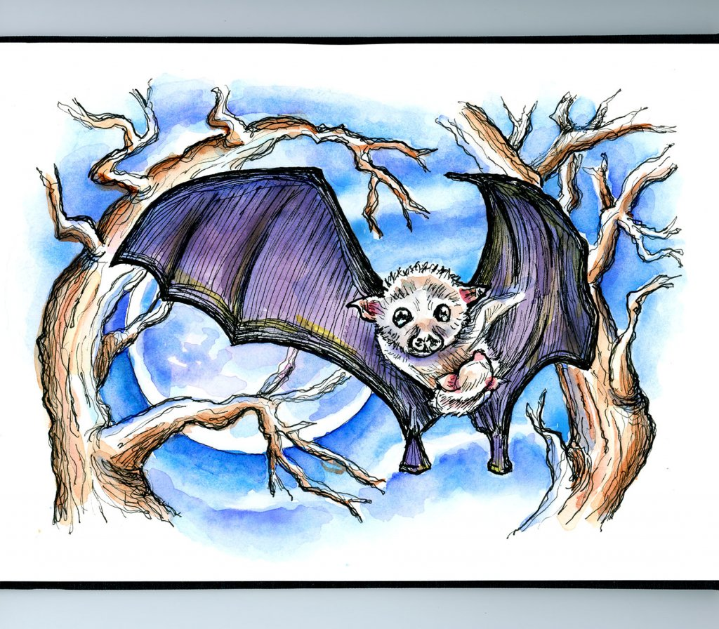 Baby Bat And Mother Watercolor Illustration Sketchbook Detail