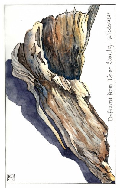 Driftwood Watercolor Journal Sketch