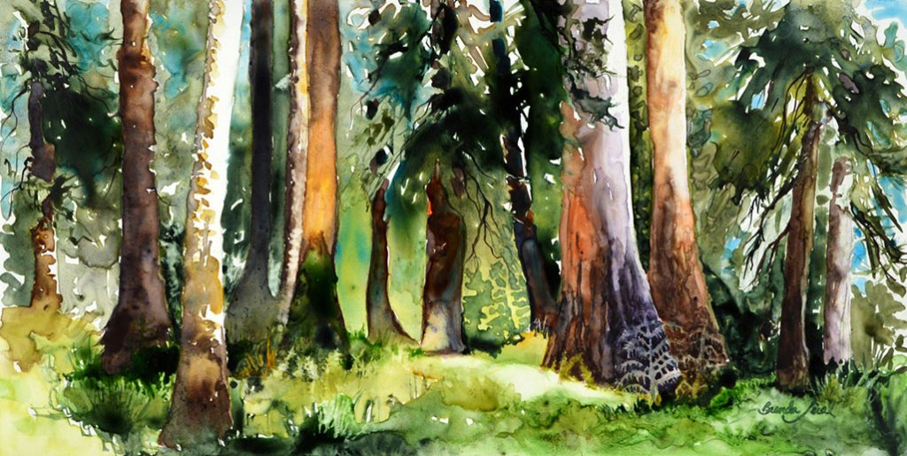 Enchanted - Trees Watercolor Painting by Brenda Jiral
