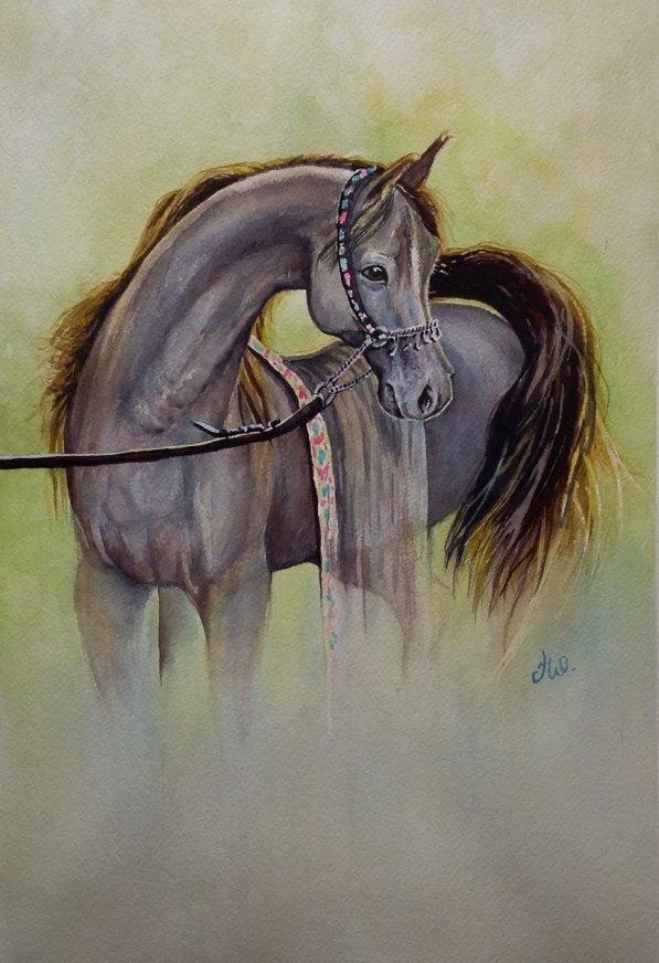 Horse Watercolor by Teresa Whyman Tesartmania