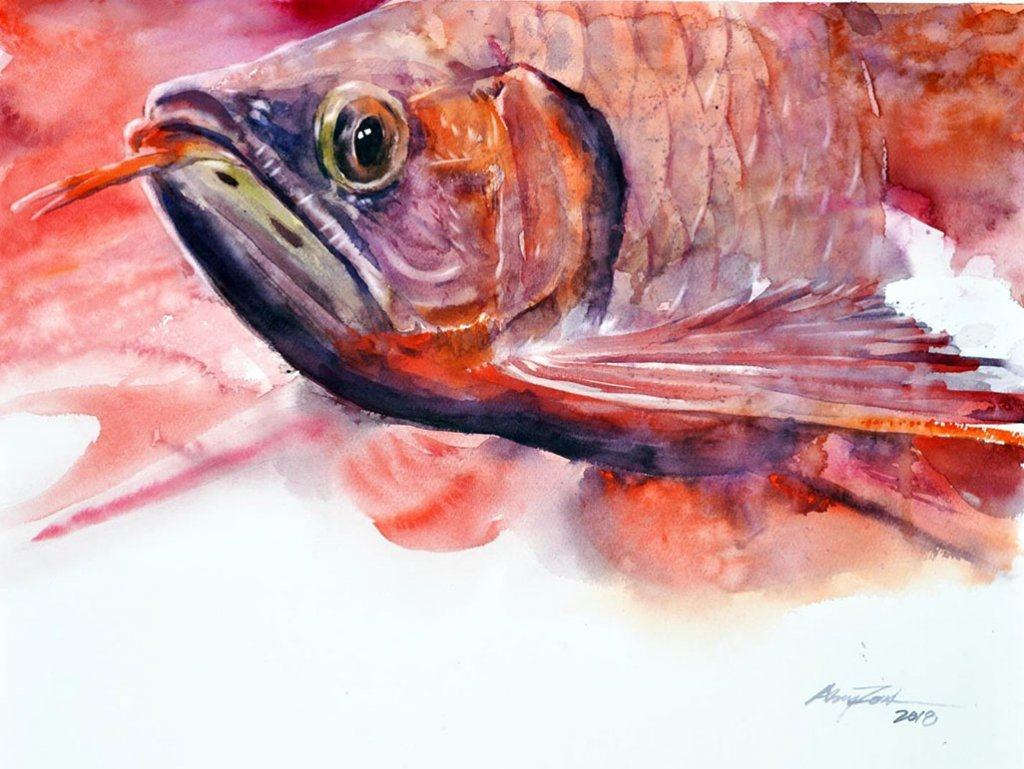 RED AROWANA pink fish watercolor by Abey Zoul