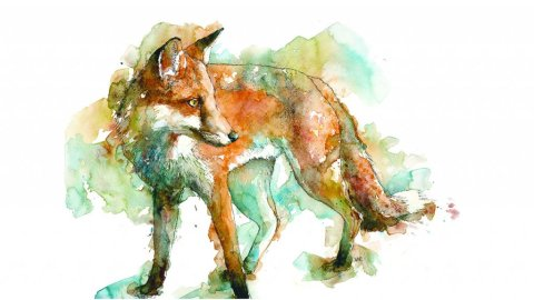 Red Fox Watercolor Painting by Valerie de Rozarieux