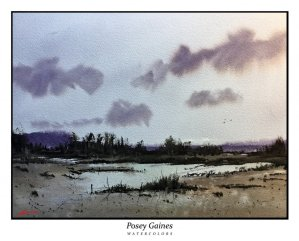 posey-gaines-new-home2