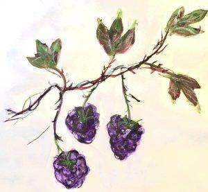 #doodlwashNovember2019 #doodlewashNovember2019FunThingstoDraw Day 12: Berries 5AD8BC36-AC8D-4229-AE3