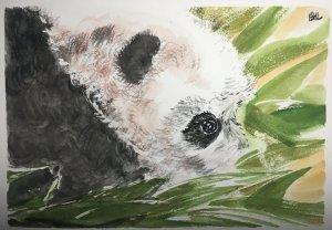 Day 16 : panda\'s voice in the loss of natural habitat : please loving me by preserving habita