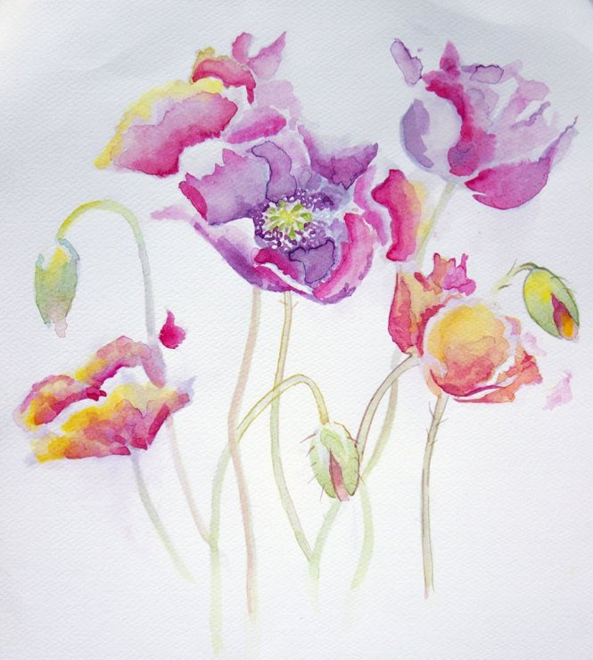 Colorful Flowers Watercolor Painting