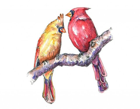 Cardinal Red Birds Male Female In Tree Watercolor Painting