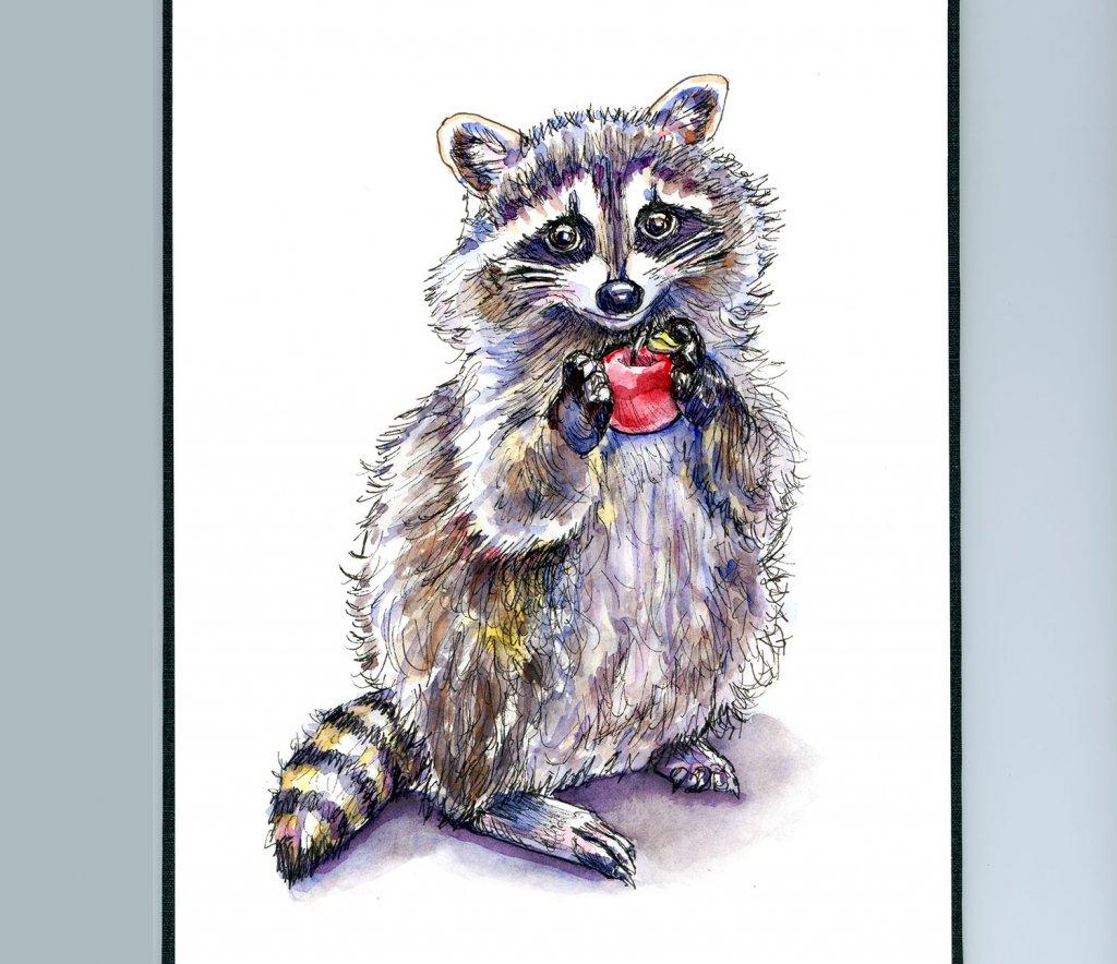 Raccoon Standing With Apple Watercolor Painting Sketchbook Detail