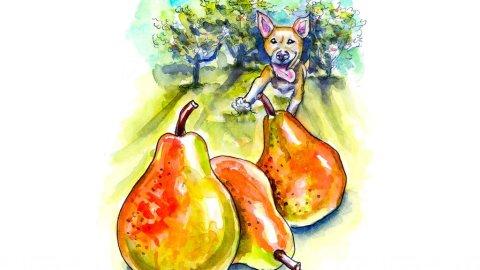 Pear Trees Dog Running Watercolor Illustration