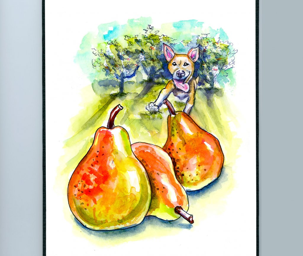 Pear Trees Dog Running Watercolor Illustration Sketchbook Detail