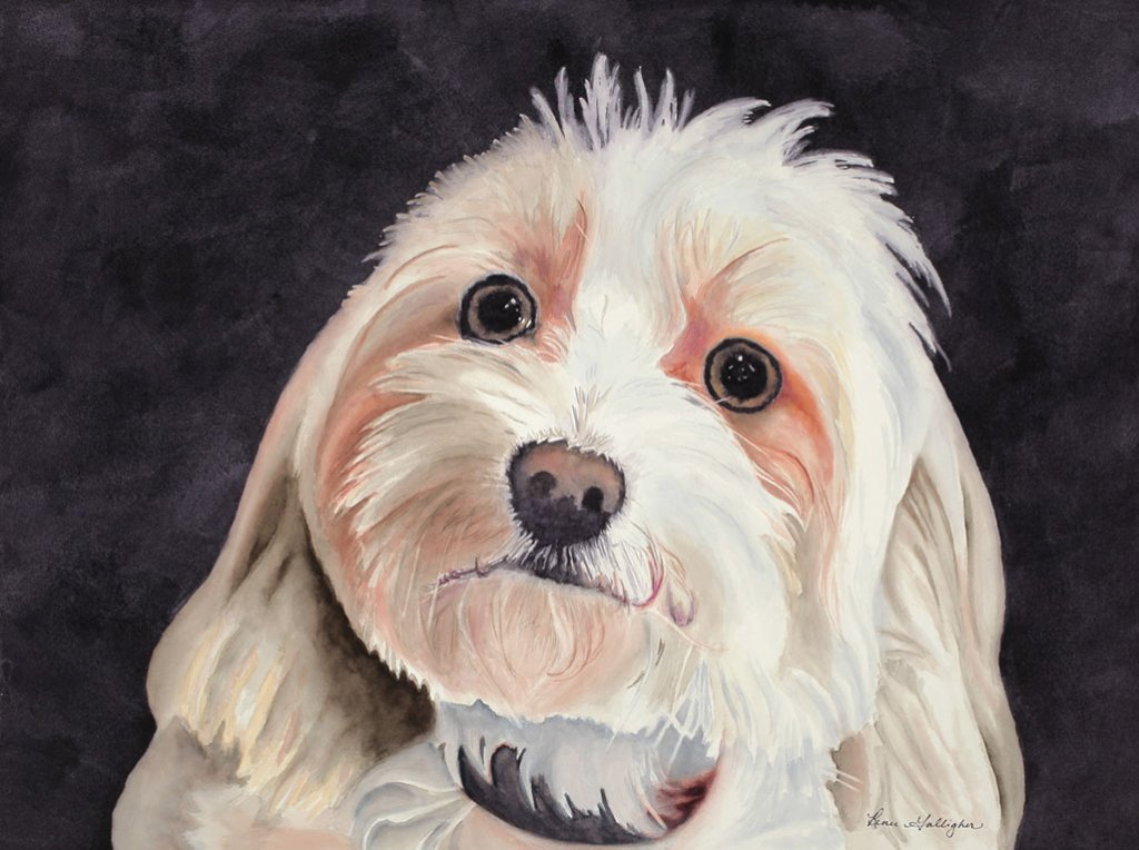 White Dog Pet Portrait Watercolor Painting by Renee Galligher