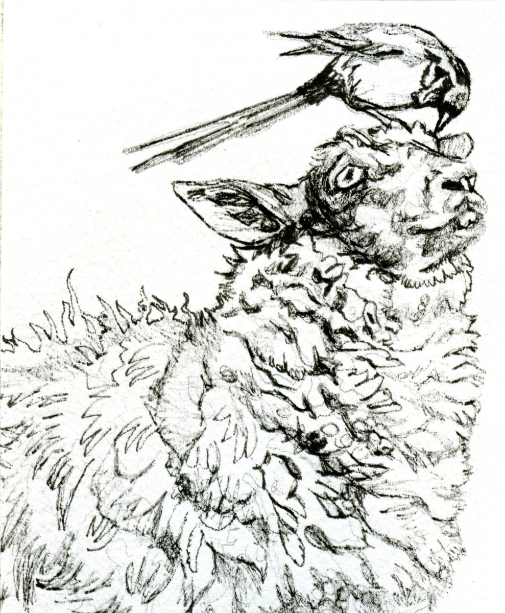 Ink Drawing of Sheep and Bird
