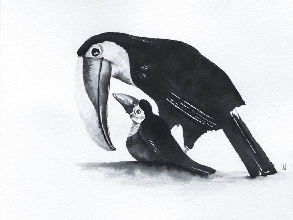 Treasure Toucan Ink Drawing by Lori Nass