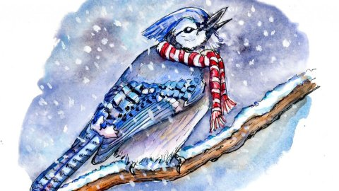 Bird Catching Snowflakes Watercolor Illustration