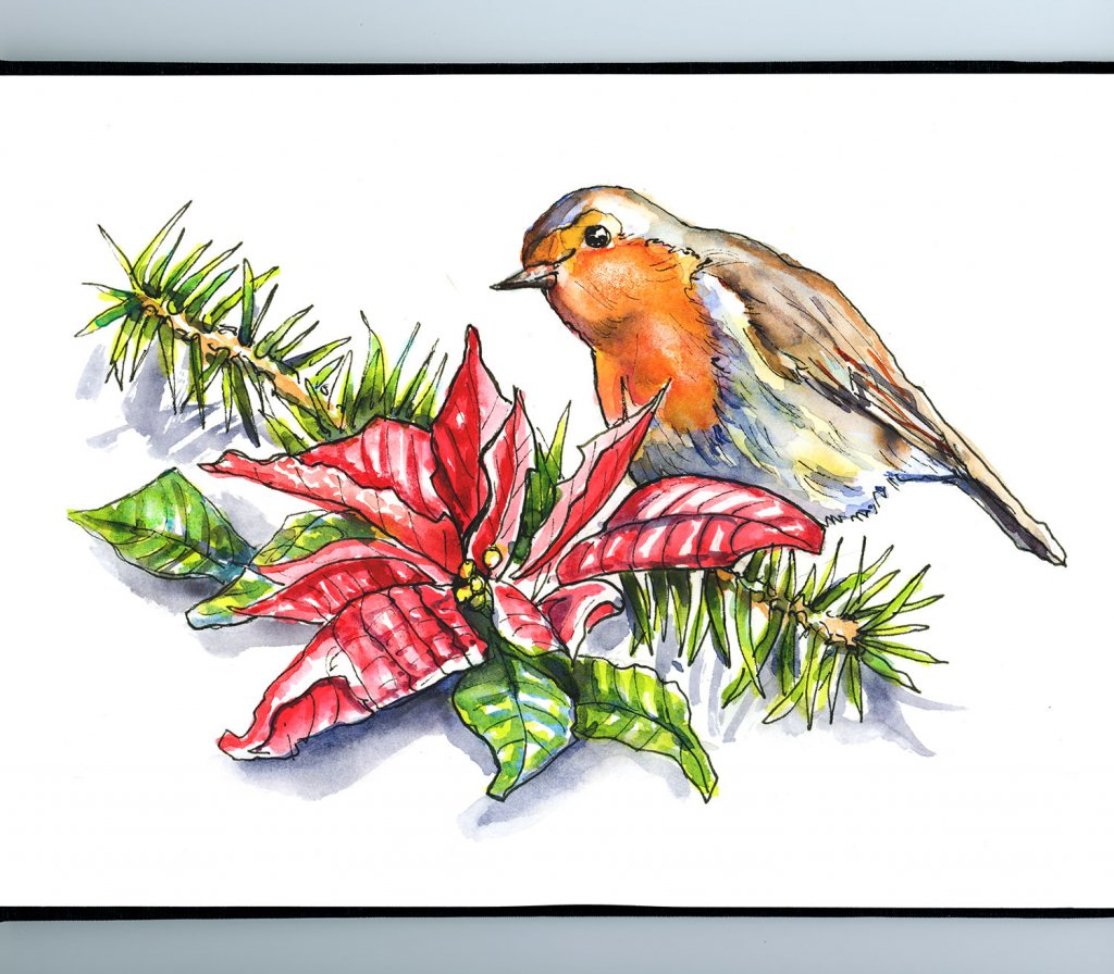 Poinsettia And English Robin Watercolor Illustration Sketchbook Detail