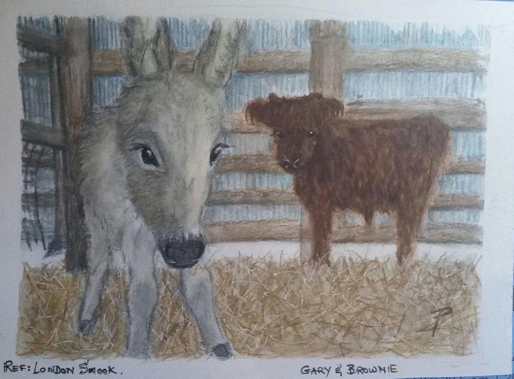 Gary & Brownie