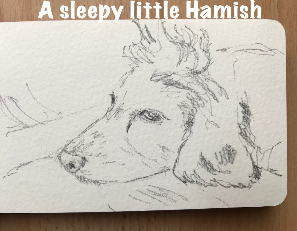 #sketchbook #hamish IMG_3684