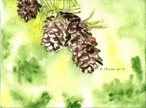 Going to try to stay up with at least some of the prompts this month. Here's my pine cone effo
