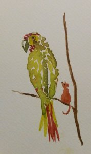 For the 8th prompt of January (Parrot). 20200109_000940~2