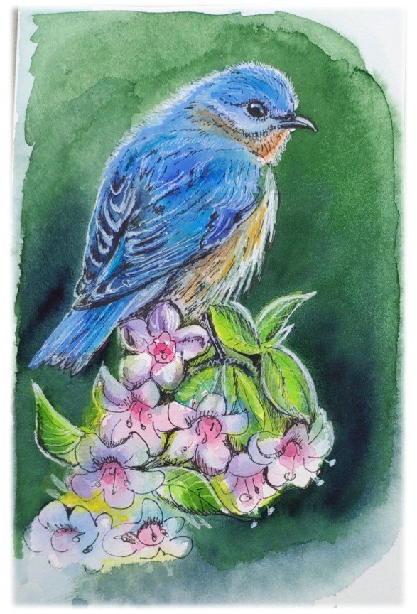 Bluebird Watercolor Painting by Tatiana Manukovskaya