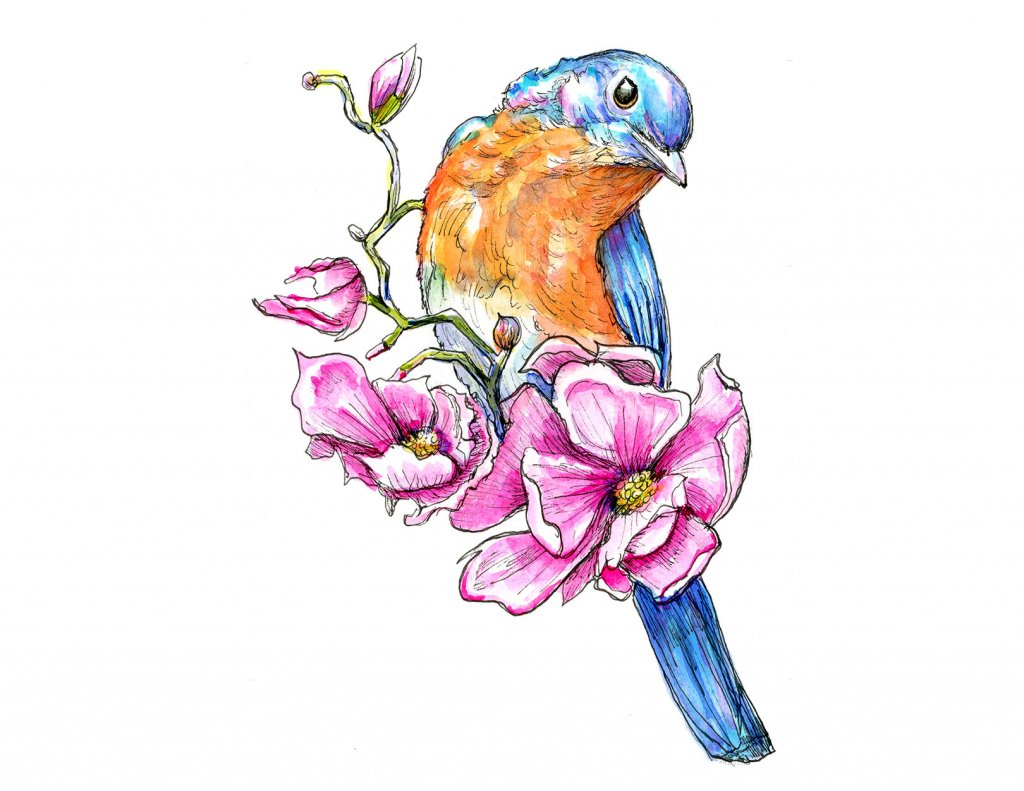 Bluebird Magnolia Flowers Watercolor Illustration