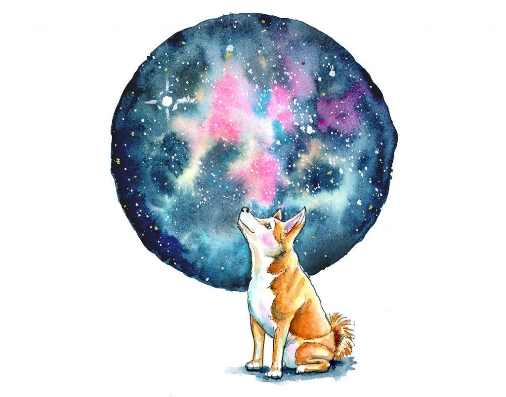 Galaxy Watercolor With Shiba Inu Illustration