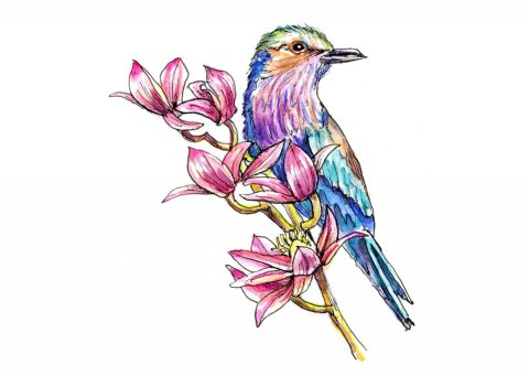 Bird And Flowers Lilac Breasted Roller Watercolor Painting