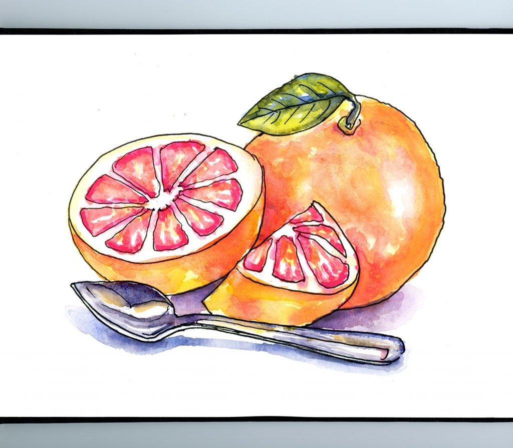 Grapefruit And Spoon Watercolor Painting Sketchbook Detail