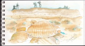 Day 5 Prompt on January 7…not too far behind. Seashells. We are leaving for a Carribean Cruise