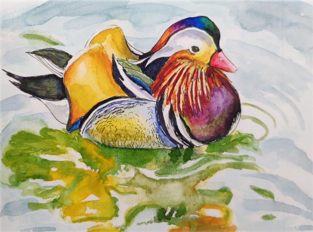 Mandarin Duck Watercolor Painting