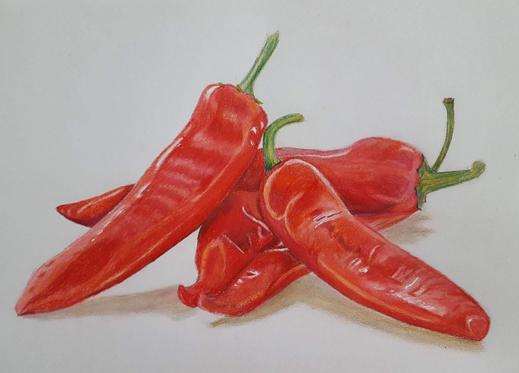 Red Chilies Watercolor Pencil Drawing Judy Jones