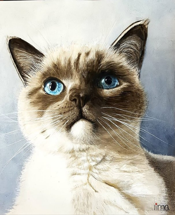 Cat Eyes Watercolor Pet Portrait by Nereida Lima
