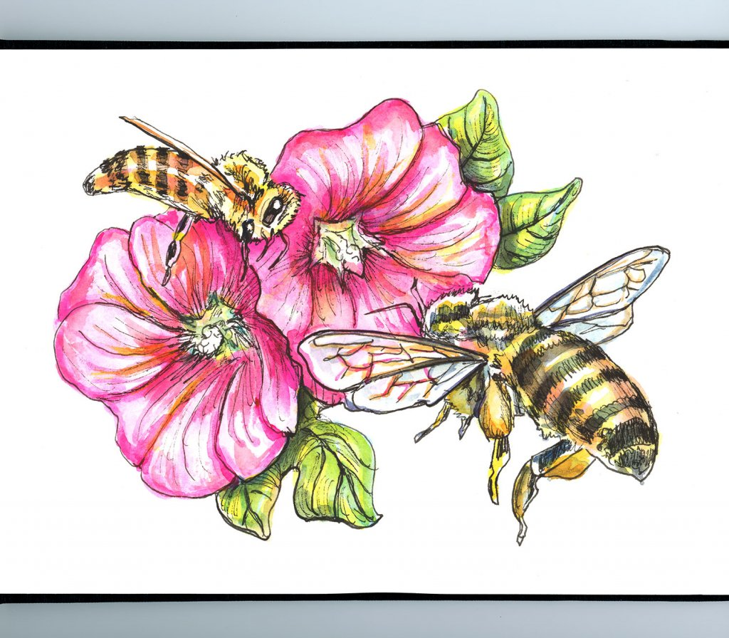 Bees And Hollyhocks Flowers Watercolor Painting Sketchbook Detail