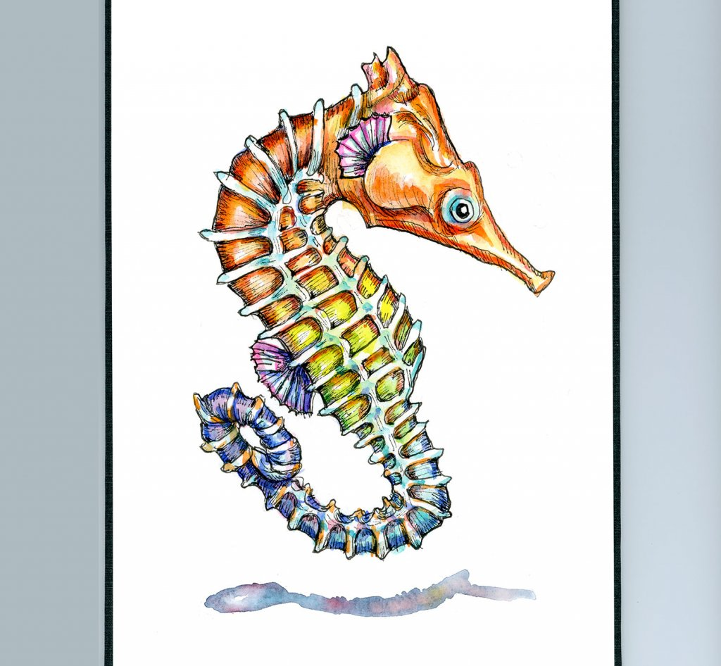 Seahorse Colorful Watercolor Painting Sketchbook Detail