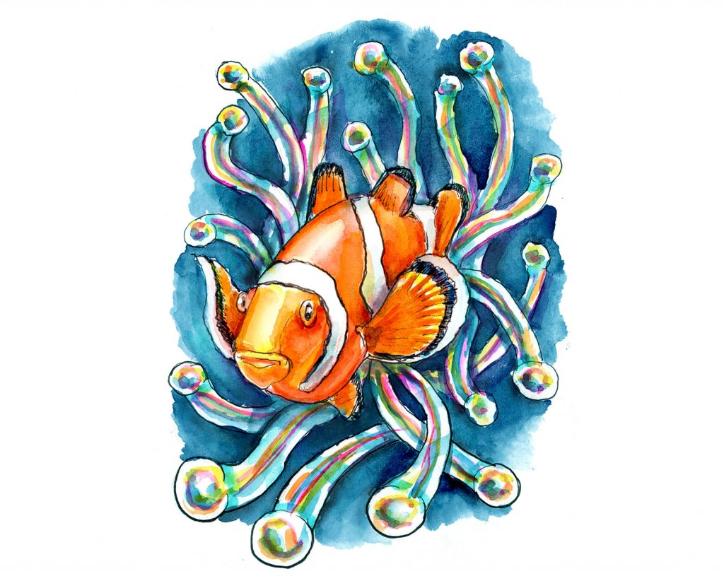 Clownfish and Sea Anemone Watercolor Painting