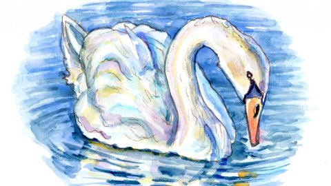 White Swan On The Water Watercolor Painting