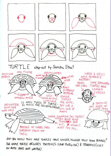 Tutorial-How to Draw a Fun & Easy Turtle #Doodlewash Prompt: Bubbles #Fun&EasyLandscapes #Ha