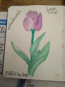 Lone Tulip #watercolorworldgroup #doodlewashmarch2020 1583981349868