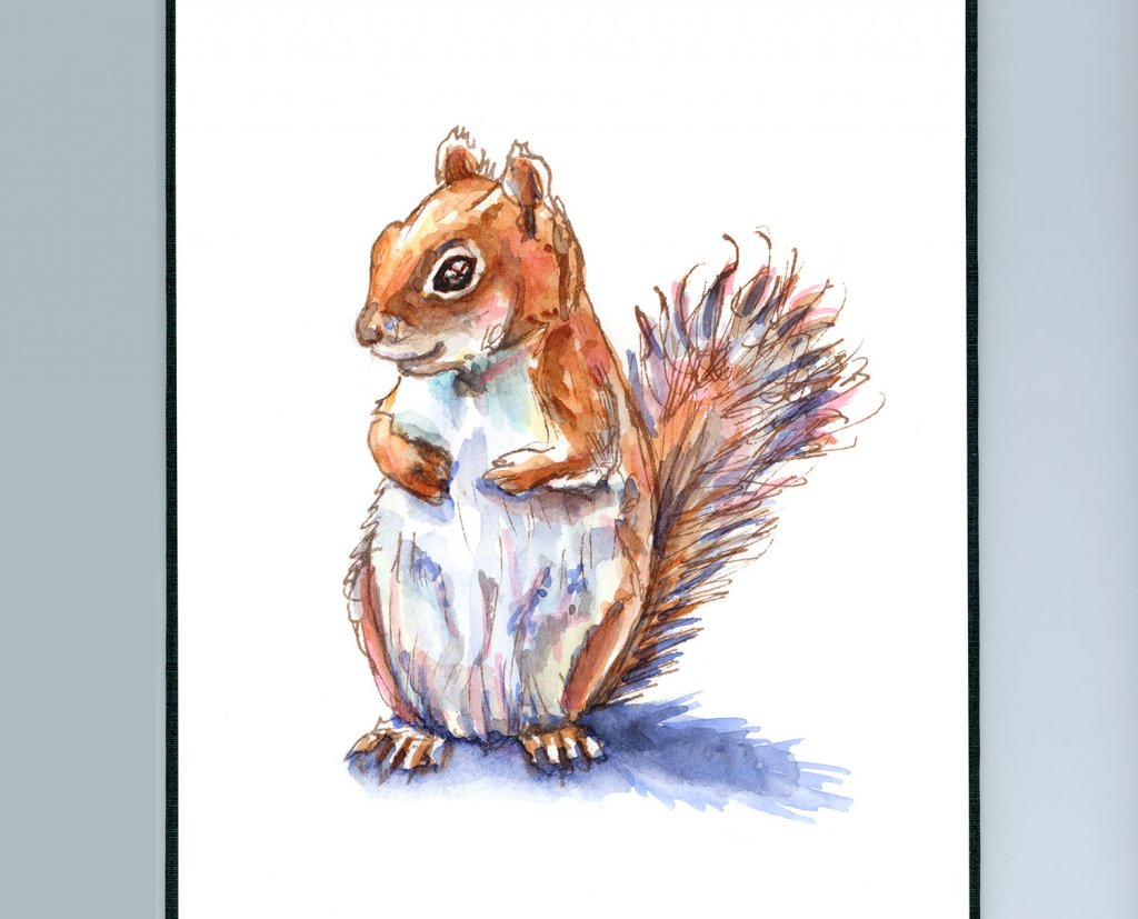 Brown Red Squirrel Watercolor Painting Sketchbook Detail