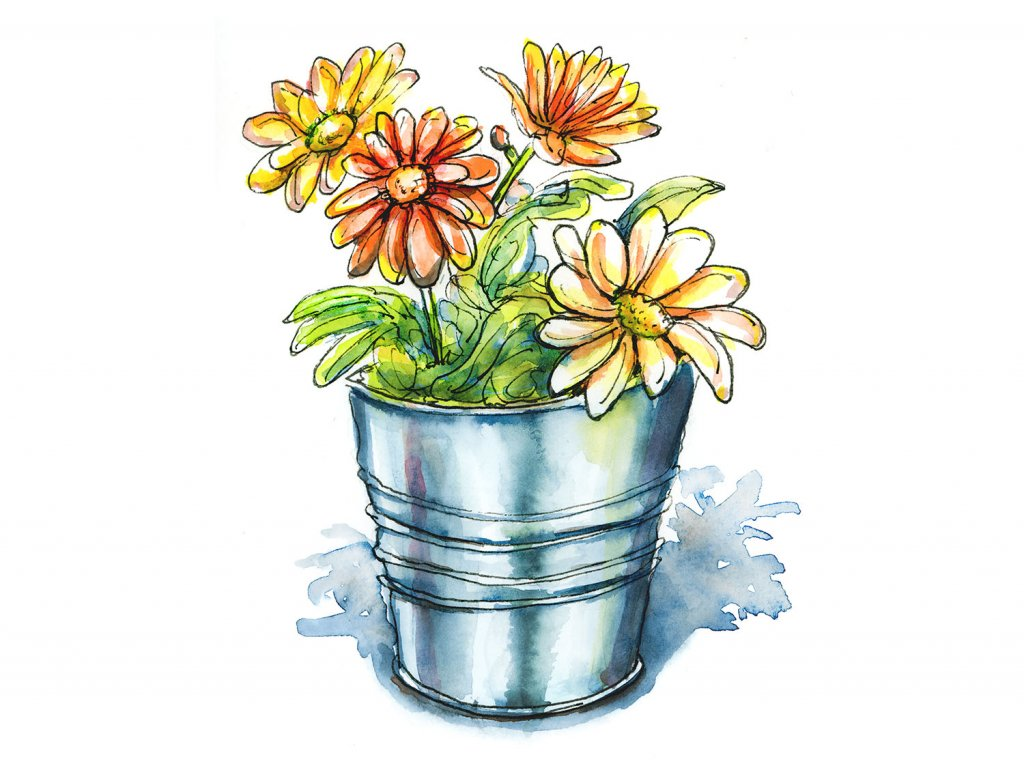 Pot Of Flowers Watercolor Illustration