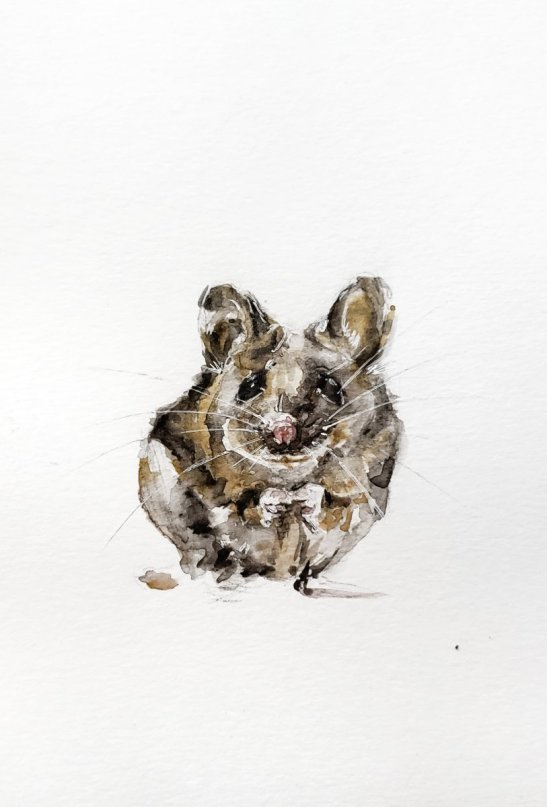 Mouse Watercolor Painting