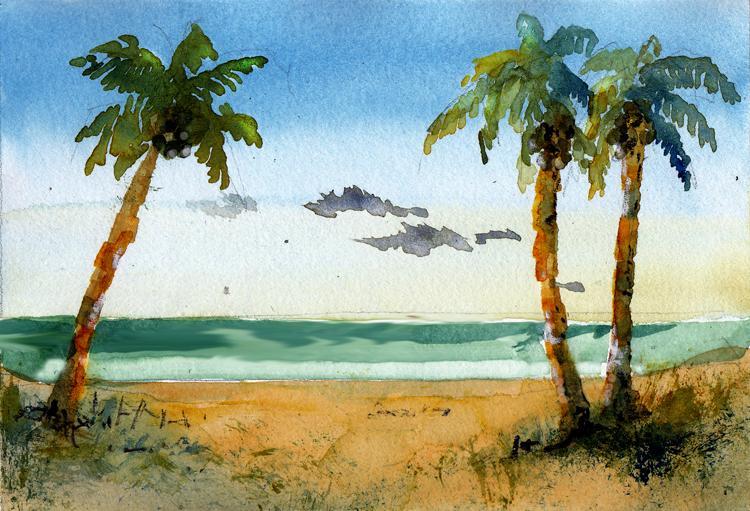 09Apr2020. Coconut (palms) 09_coconutPalms_750w96dpi