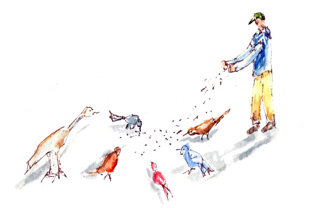 4/8/20 Bird Feeder 4.8.20 Bird Feeder img033